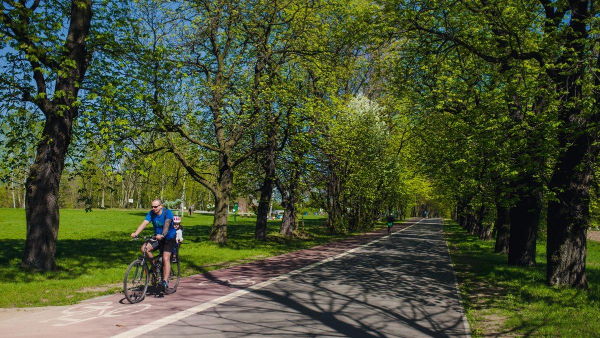 Wspólne standardy dla dróg rowerowych. Spotkanie w poniedziałek