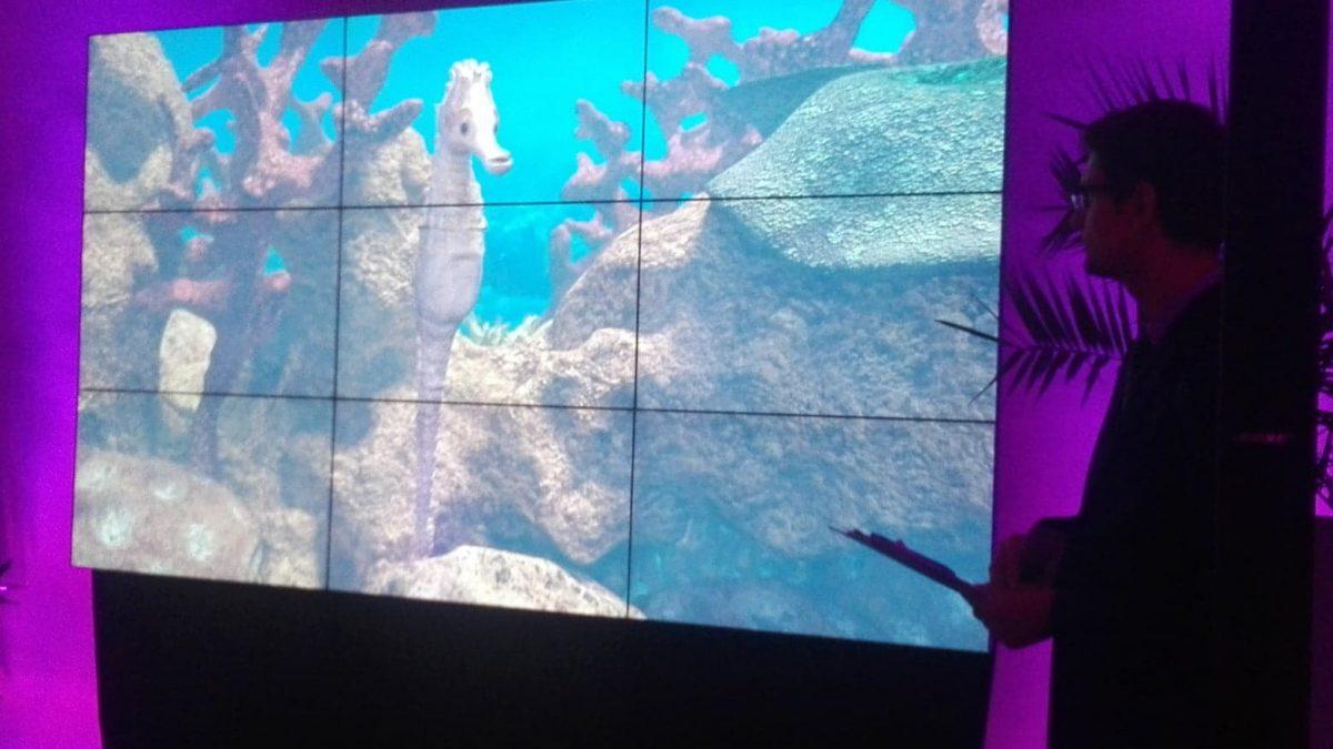Wizualizacja konika morskiego, wyświetlana na dużym ekranie