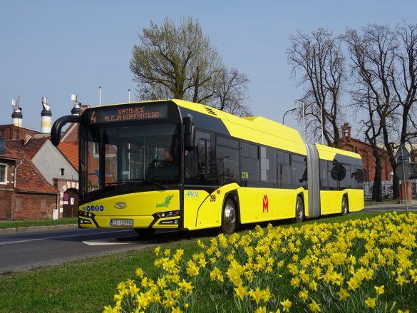Żółty autobus w trasie, na pierwszym planie kwietnik z żółtymi kwiatami