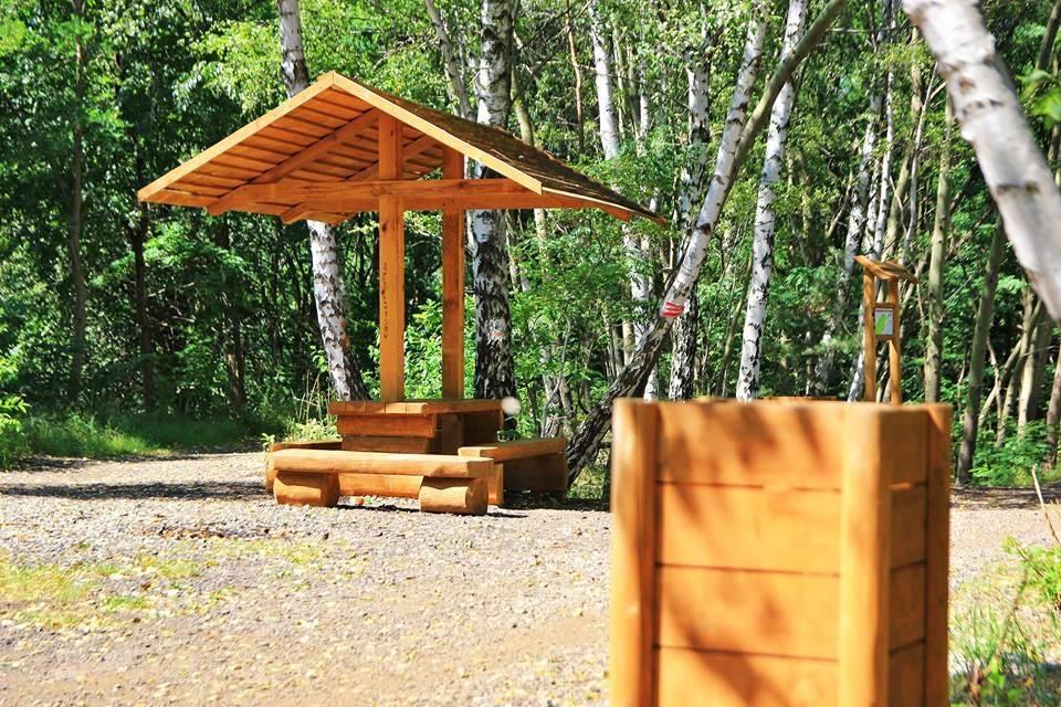 Milowicki park doczeka się rewitalizacji