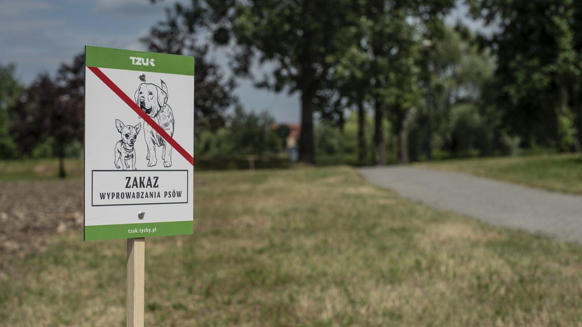 Zdjęcie łaki z tabliczką z napisem Zzakaz wyprowadzania psów
