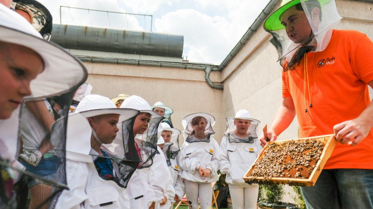 Dzieci ubrane w stroje pszczelarzy oglądające plastry miodu z pasieki, które prezentuje pan również ubrany w strój pszczelarza