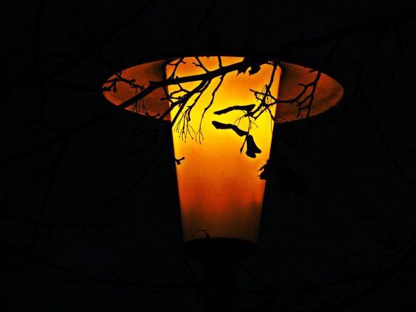Lampa uliczna w nocy