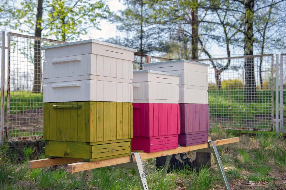 ule na pszczoły