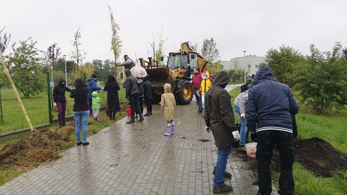 Mieszkańcy Tarnowic sadzą drzewa