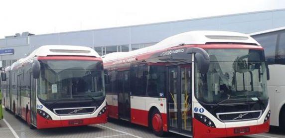 Sosnowieckie autobusy w zajezdni