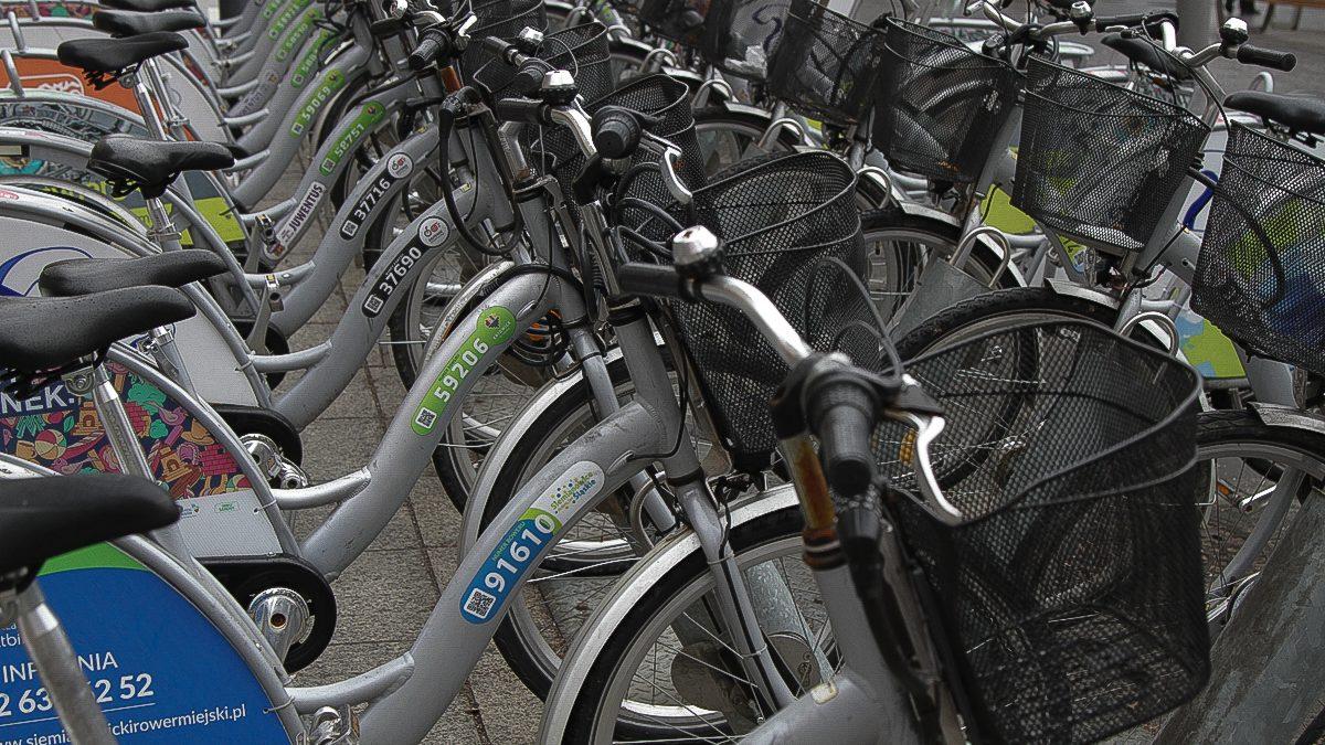 Rowery miejskie w wypożyczalni