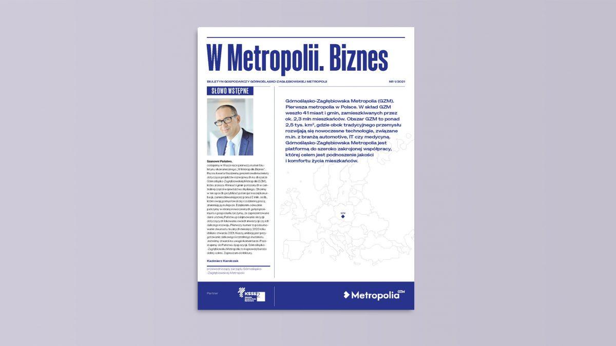W Metropolii - biznes (okładka)